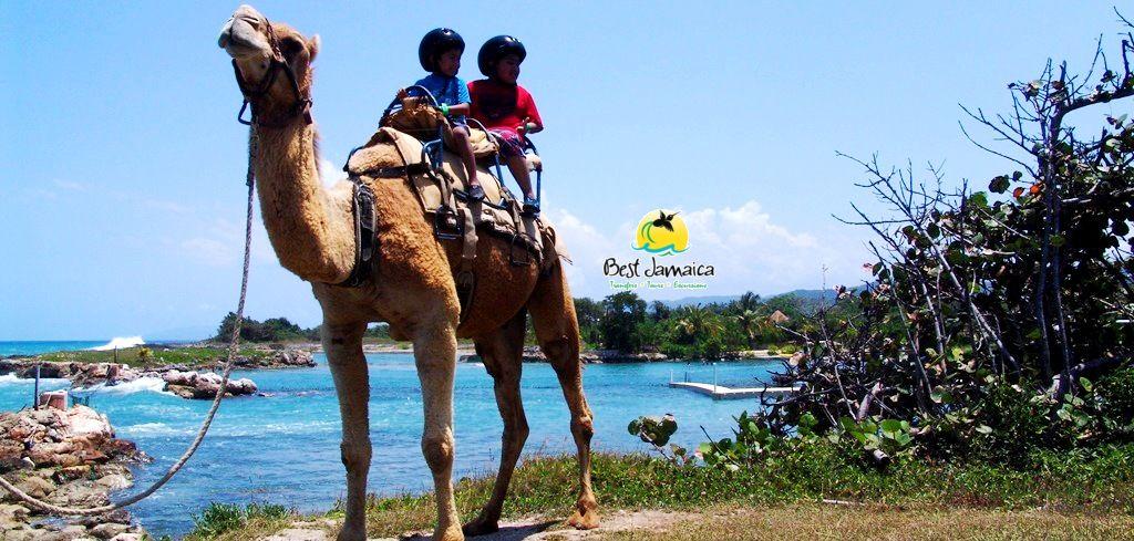 Falmouth Jamaica Shore Excursions