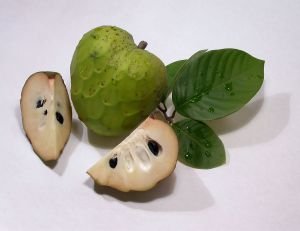 jamaican custard apple - photo #13